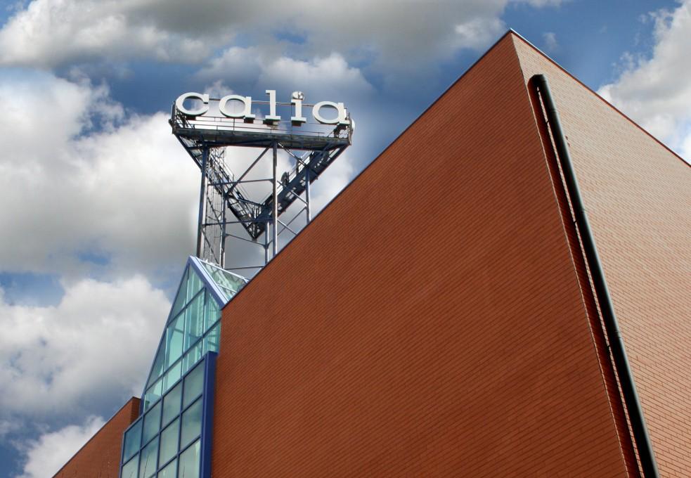 Calia Italia - Calia Italia nella puntata di Buongiorno Regione in onda su Rai3